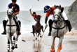 Beach Polo coming to Rovinj