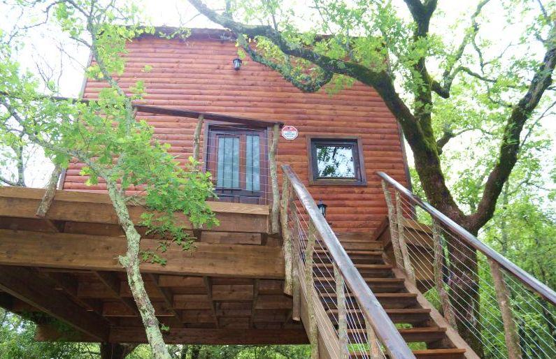 Treehouse was opened on Wednesday (photo credit: dubrovniktv.net)