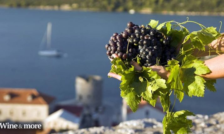 [INFOGRAPHIC] Croatian Wine Map – Wine Regions of Croatia