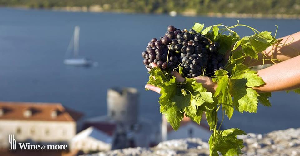 [INFOGRAPHIC] Croatian Wine Map – Wine Regions of Croatia