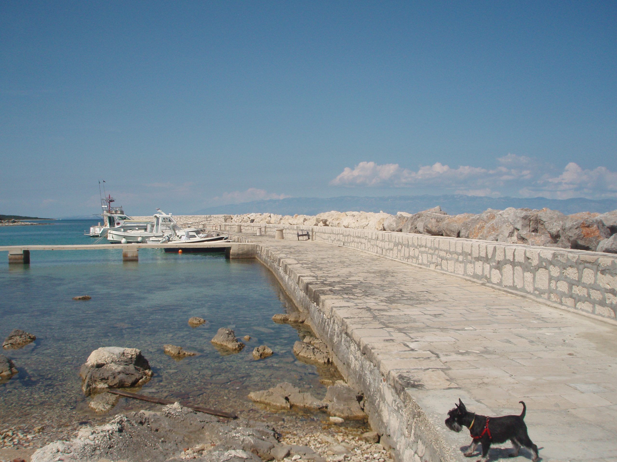 The pier in Silba's harbour of Mul.