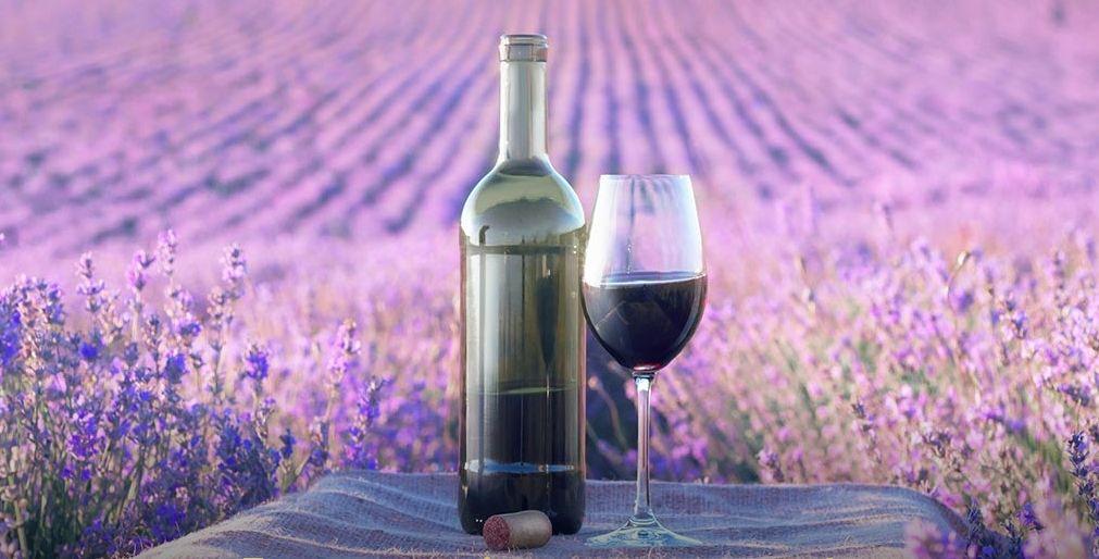 7 Must-Try Summer Wines in Croatia