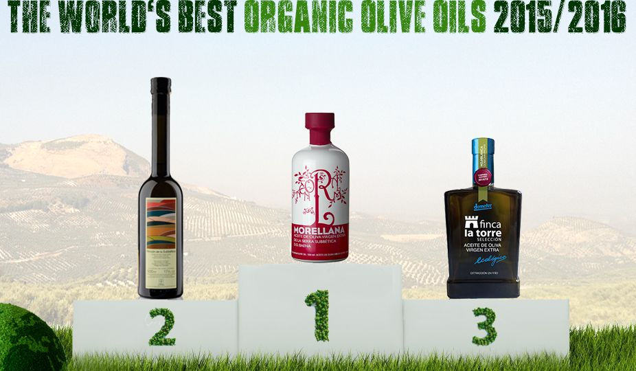 Croatia's Chiavalon Ex Albis Ranked Among World's TOP 25 Organic Olive Oils