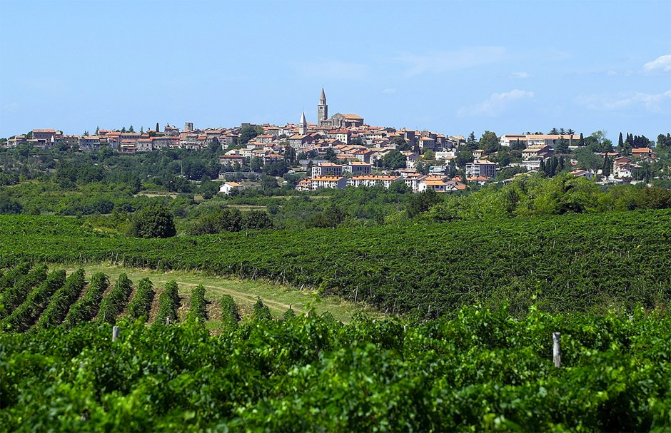Buje - Istria (photo credit: www.veralda.hr)