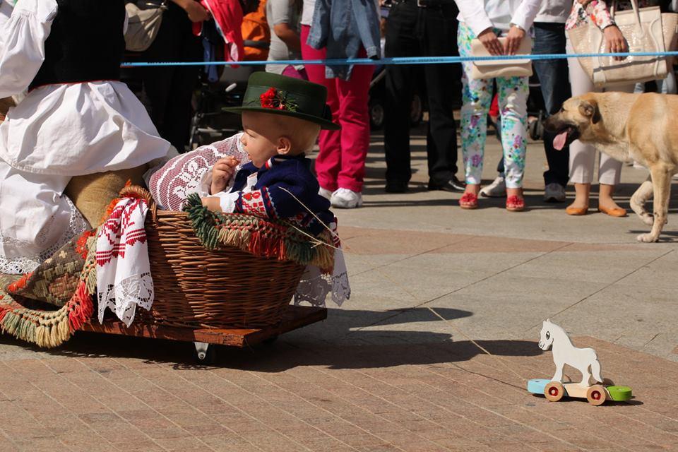 Traditions kept alive and showcased at the festival (photo: Vinkovačke Jeseni)