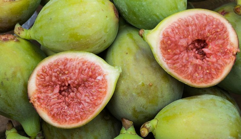 Demand for figs growing globally, production in Croatia drops