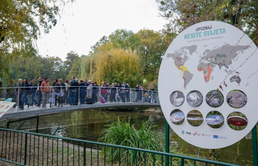Photos Modernised Zagreb Zoo Officially Opens Croatia Week
