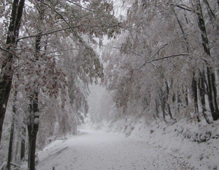 Snow greeted the assessor (photo credit: Northern Velebit National Park)