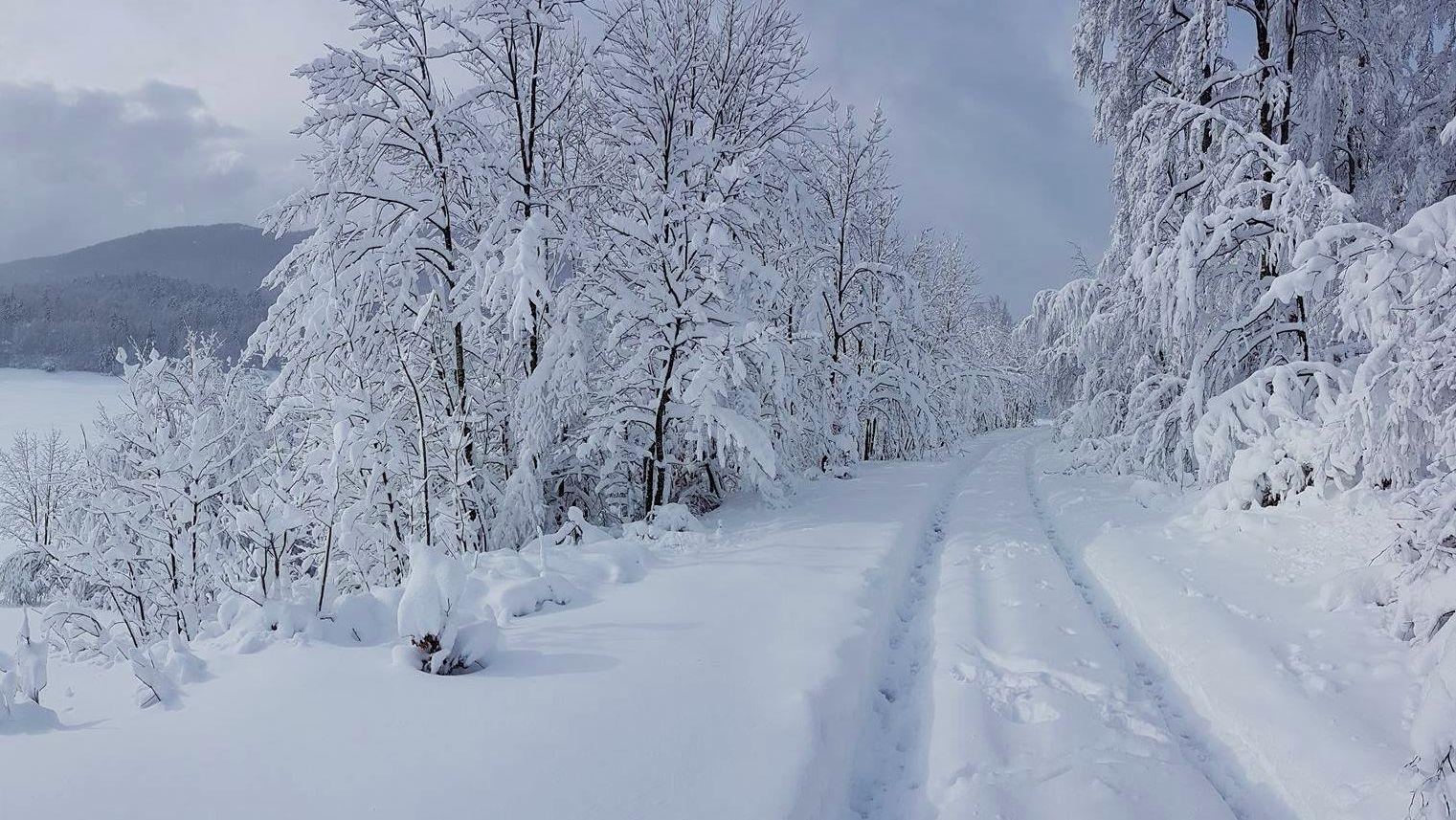 Snow on Platak (photo credit: Mauro Kesovija / Istramet)