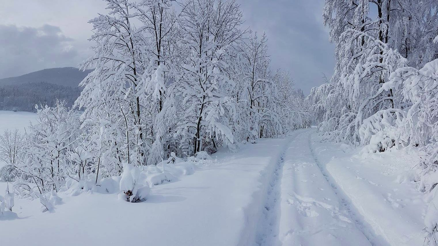 [PHOTOS] Winter Arrives with Stunning Snow Fall for Parts of Croatia