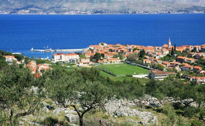 Croatian Island of Brač to Host 1st World Championship in Olive Picking