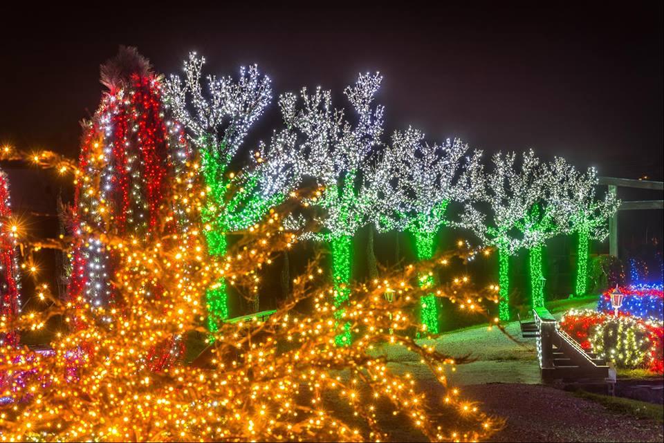 Salajland (photo credit: Davor Kirin-Photography / Facebook Božićna Priča Obitelji Salaj - Salajland)