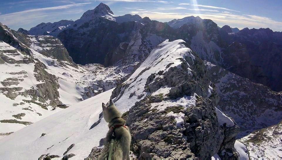 [VIDEO] Spectacular Biokovo Mountain Run with the Dog