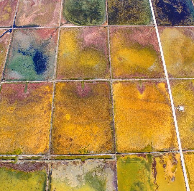 [PHOTO] Amazing Aerial Shot of Nin Salt Pans on Croatian Coast