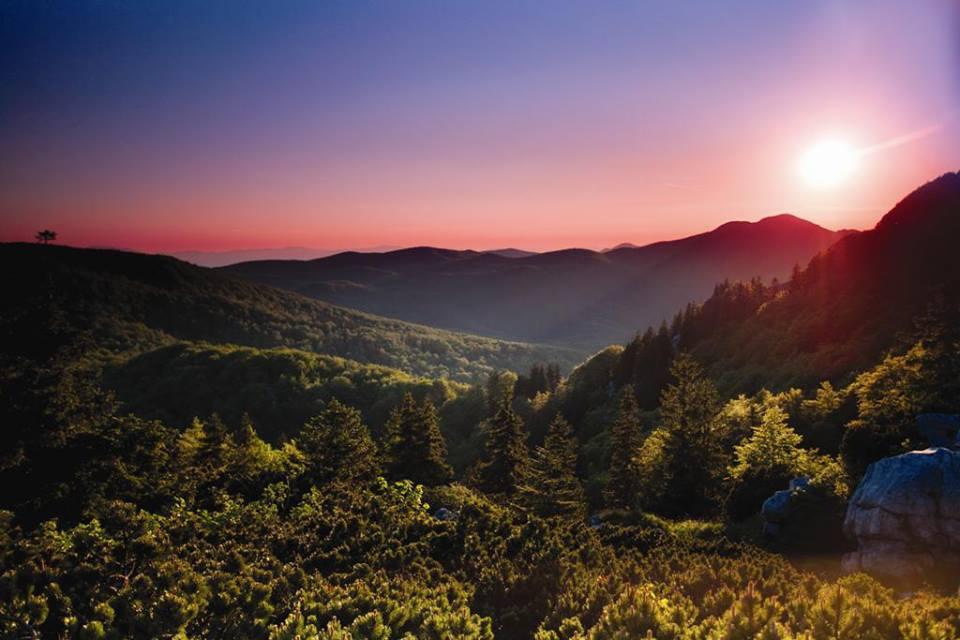 Outdoor Survival & Wildlife Education at National Park Risnjak