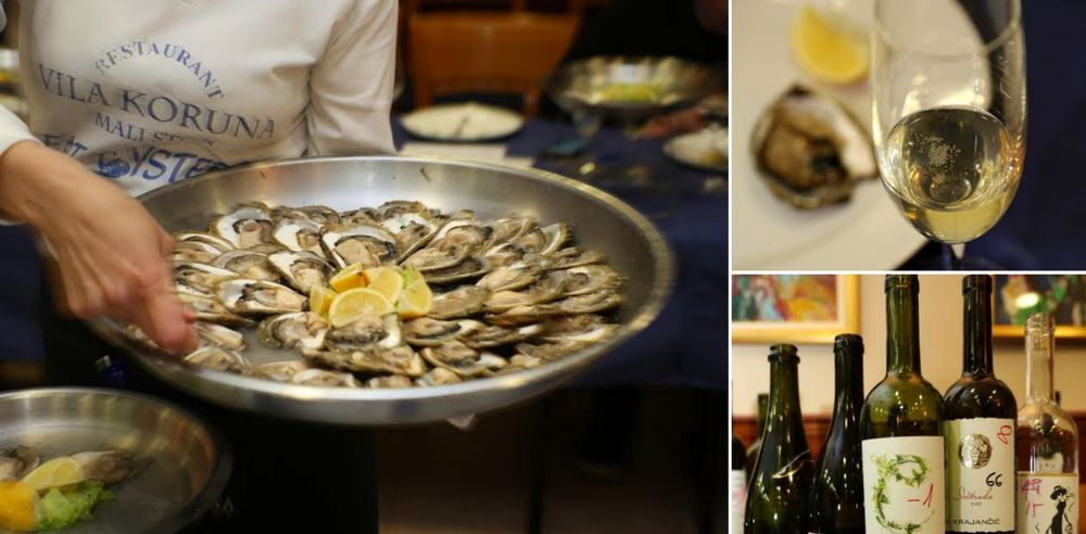 Best Wines to Match with Mali Ston Oysters Judged