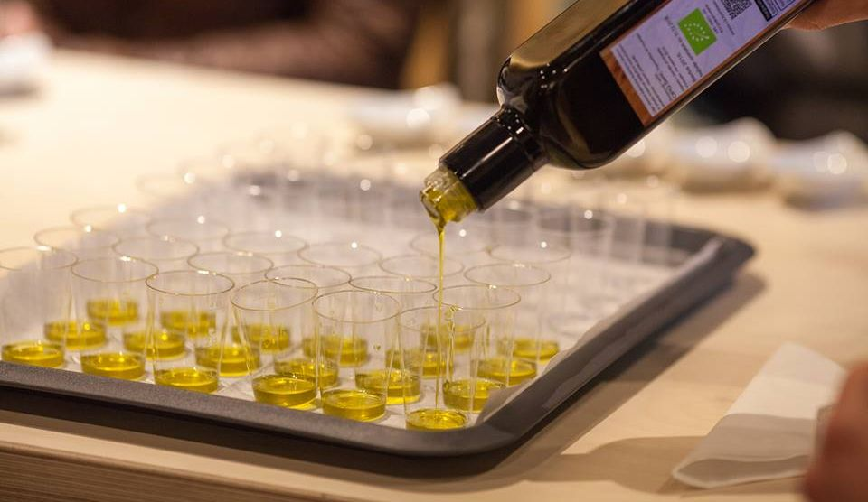 First Istrian Olive Oil Museum in Croatia Opens