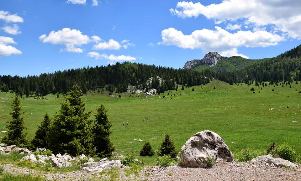 UNESCO Makes Forest in Croatian National Park a World Heritage Site