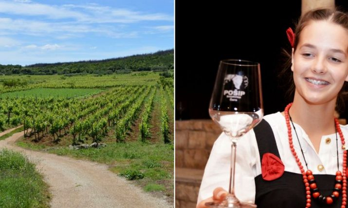 Celebrate Days of Pošip on Korčula –  First Indigenous Croatian White Wine Grape