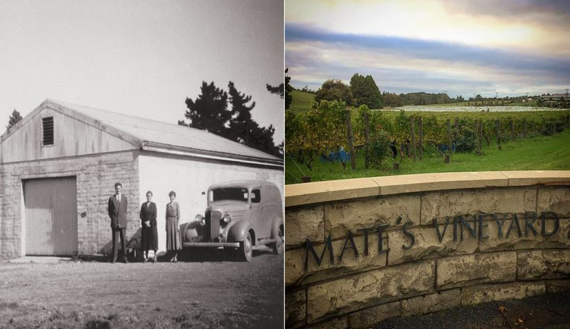 The Croatian Immigrant Family who Created One of New Zealand's Best Wineries