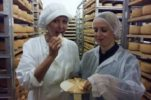 New Zealand Cheesemaker Visits Paska Sirana on Pag