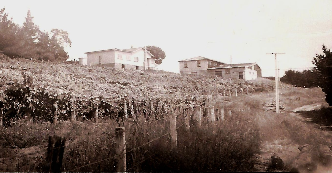 Mid-1940s-Winery.jpg