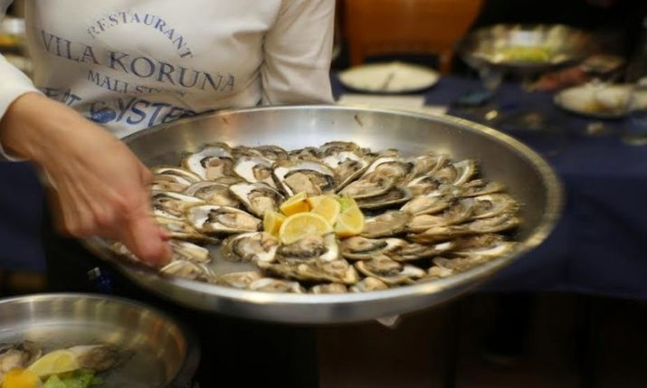 Festival of Oysters to be Held in Mali Ston