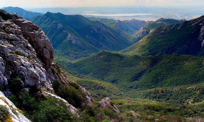 Beech Forest in Croatian National Parks on UNESCO World Heritage List