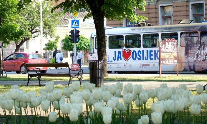 Osijek to Host Croatian Diaspora Congress