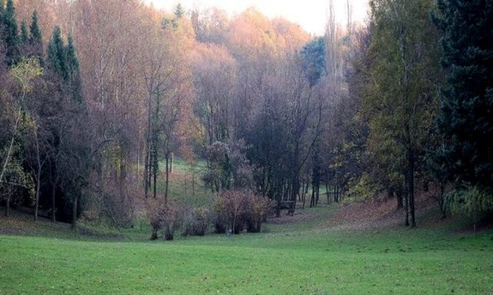 Croatian President Opens Pantovčak Park Forest to the Public
