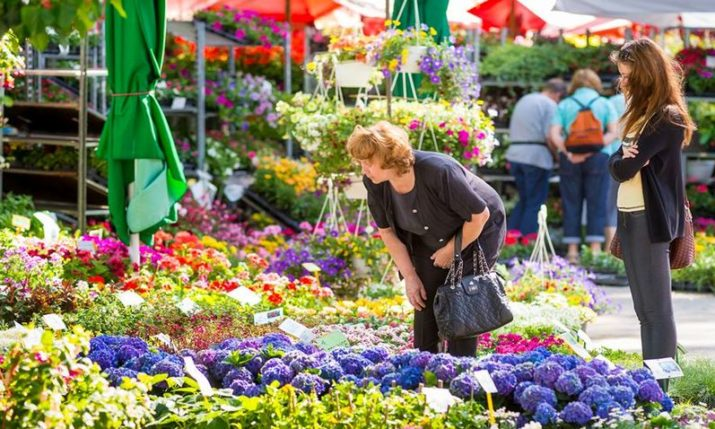 53rd International Garden Show 'Floraart' in Zagreb in May