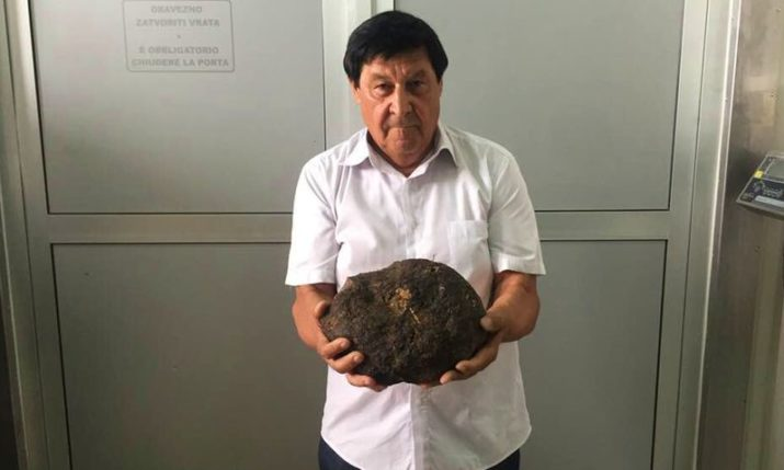 PHOTOS: Gigantic Black Truffle Found in Istria