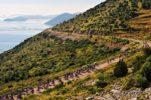 Croatia's Best-Kept Triathlon Secret: Dugi Otok's Triathlon Long Island Embraced by Nature