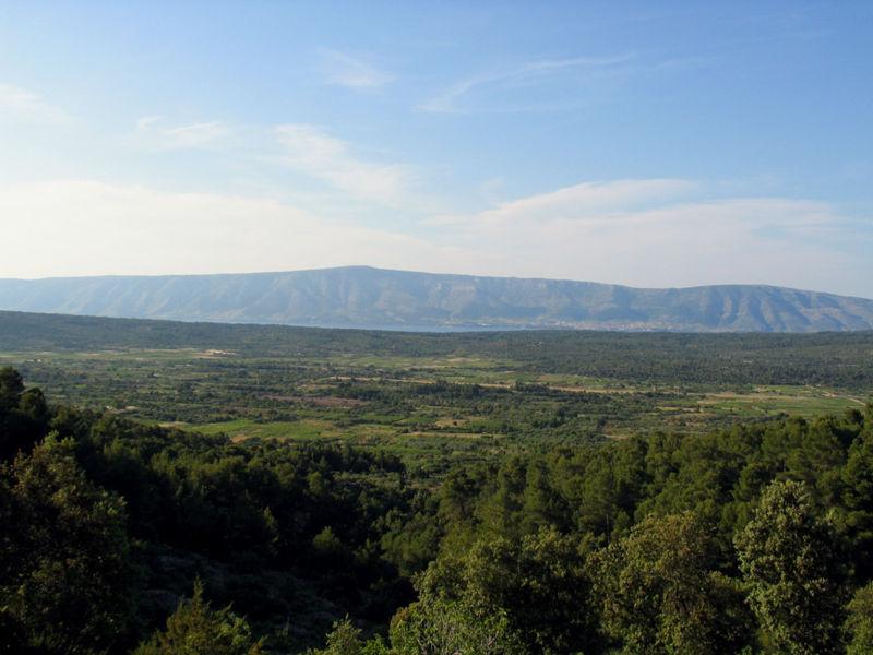 スターリグラード平原