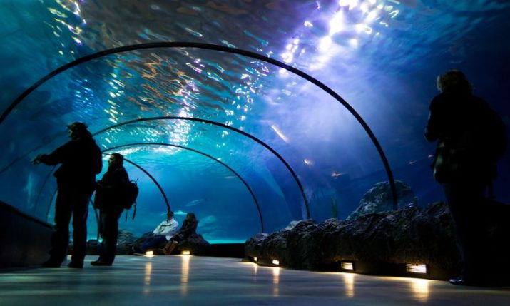 Underwater tunnel set to be new tourist attraction in Primošten