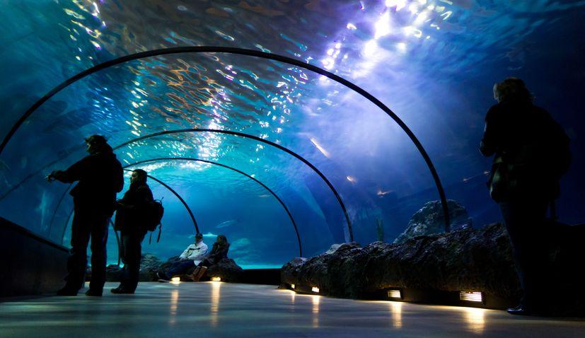 Underwater tunnel set to be new tourist attraction in Primošten