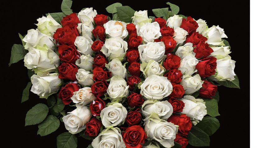 Croatian stats bureau issues Valentine's Day data