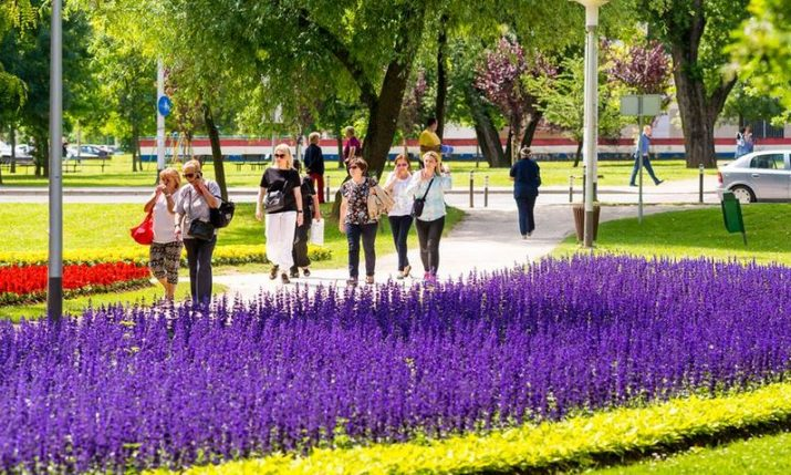 More than 200,000 flowers at this year's 'Floraart' show in Zagreb