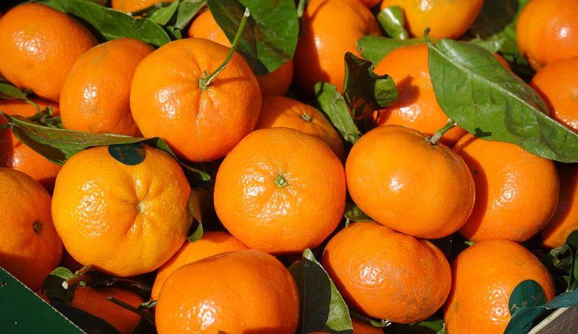 Darijo Srna donates 15 tonnes mandarins