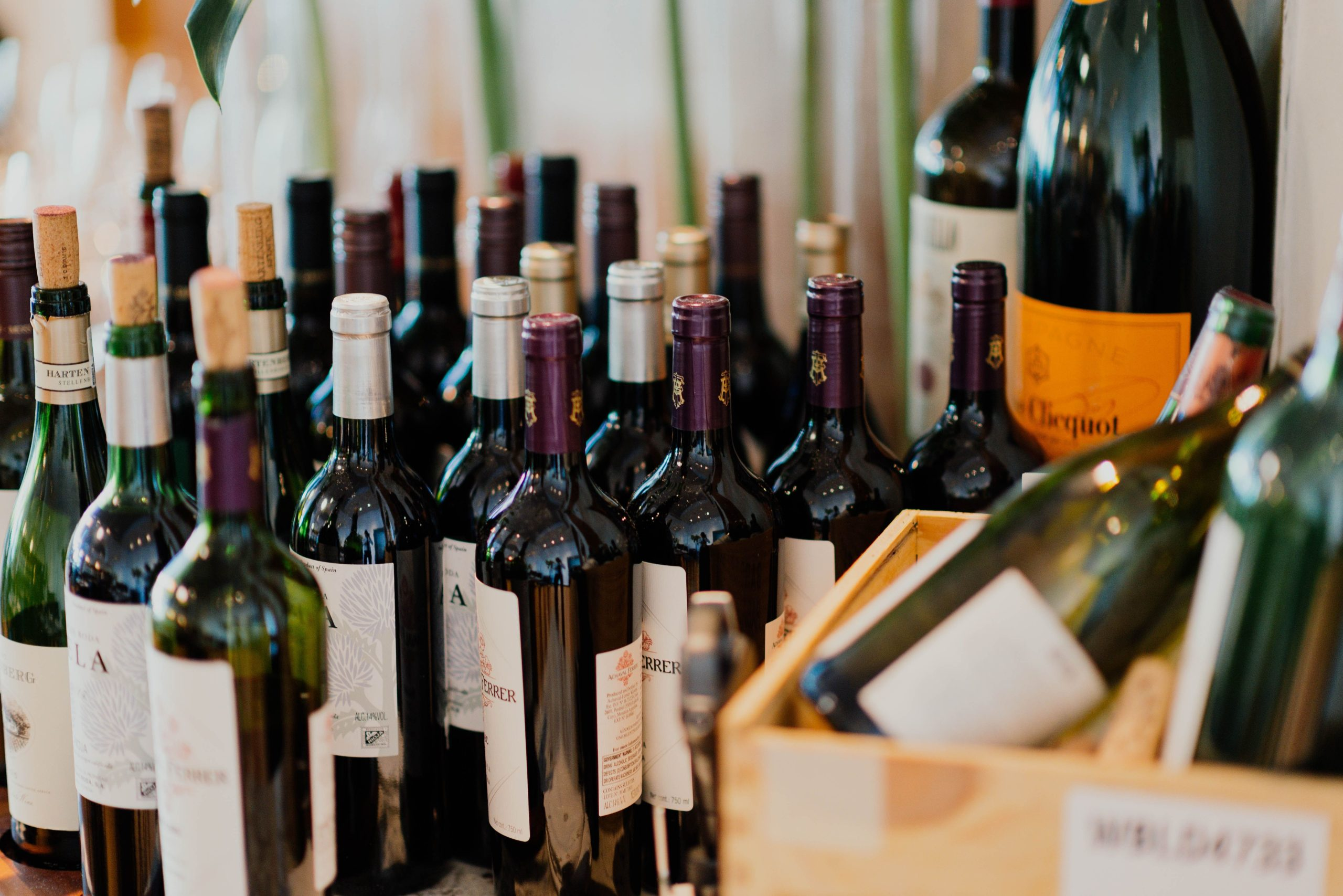 Brabant Wine Trophy: Croatian Wines Win 7 Gold Medals At World's Largest Wine