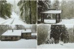 PHOTOS: Thick snow falls on Sljeme, Zagreb