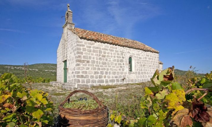 First Croatian museum of viticulture & winemaking opening on Peljesac peninsula