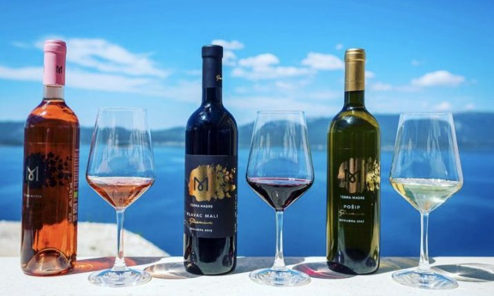 Boston's NPR station on Croatian wines: 'hot, hot, hot!'