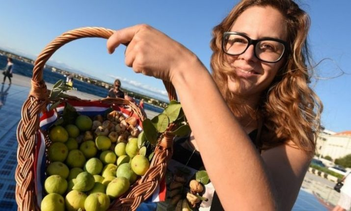 Zadar to host 12th annual Fig Festival on 6-7 September