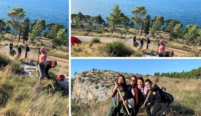 Reforesting Dalmatia: 1100 trees planted in Makarska on Saturday