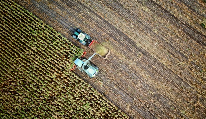 Support payments for Croatian farmers begin