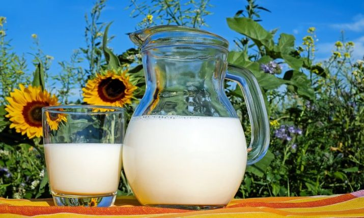 Croatian Agriculture Minister announces buying up 500,000 litres of milk from small farms