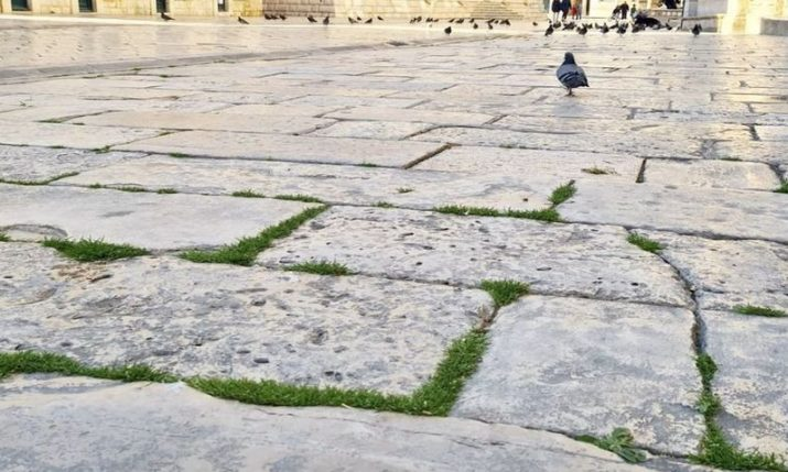 VIDEO: Workers cutting the grass on Dubrovnik's stone-paved streets