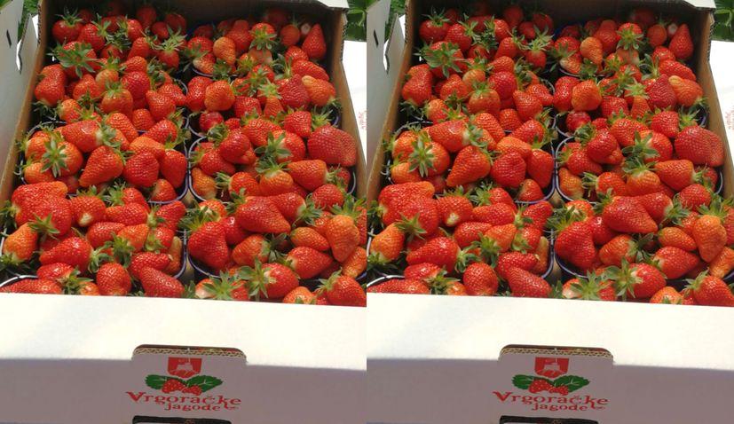 Strawberries from Vrgorac hit Croatian farmers' markets