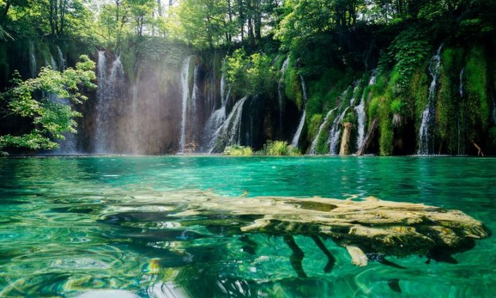 Croatia a nation very rich in biodiversity